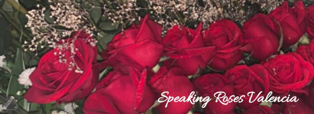 ¨Irma Marrero Detalles e Innovacion, C.A.¨   J-31764409-3 An official representative of Speaking Roses International